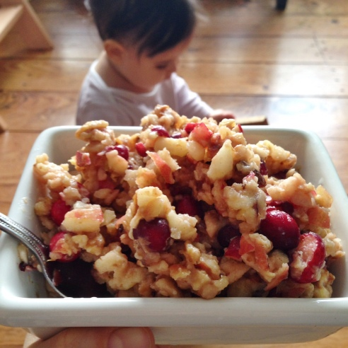 "Apple Cranberry ""Oatmeal"""